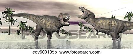 stock illustration of two tyrannosaurus rex dinosaurs fighting in