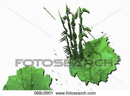 Clipart Bambus Malen In Aquarell Effekt 068c3901 Suche Clip