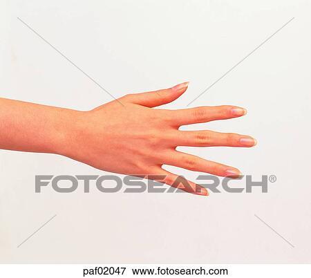 picture of finger hand hi five middle finger greeting paf02047