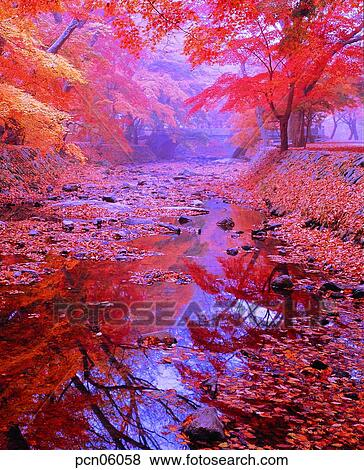 pictures of scene fall autumn view autumn scenery autumn