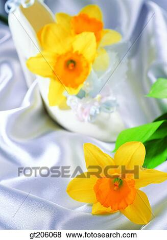 Images Fleur Jonquille Narcisse Perle Tissus Tissu Tissu