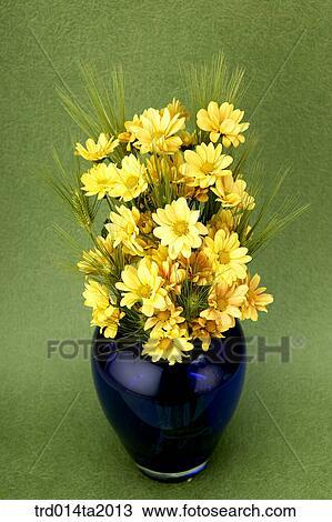 Stock Photo Of Flower Vase Chrysanthemum Decoration Flower Plant