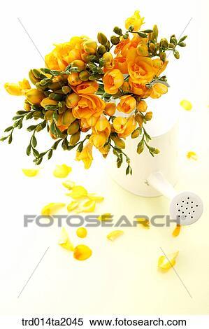 Stock Image Of Flower Vase Decoration Rose Yellow Rose