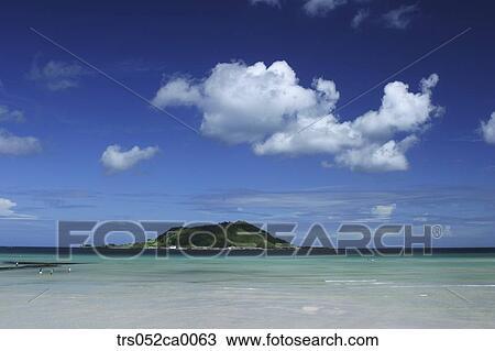Jeju Island Scene Of Beach Huypjae
