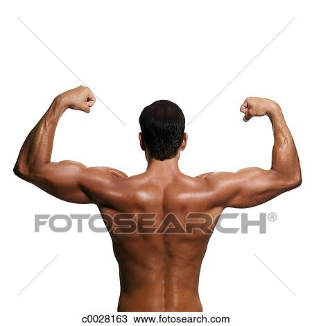 Stock Foto - silhouette, back, oberkörper, schulter, muskel, porträt ...