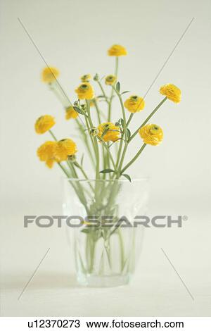 Stock photo of bunch of yellow flowers in glass vase u12370273 bunch of yellow flowers in glass vase mightylinksfo