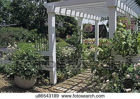 Superbe Gardens: Attractive White Wood Arbor And Fencing Set In Flower Garden.  Various Angles Shot.