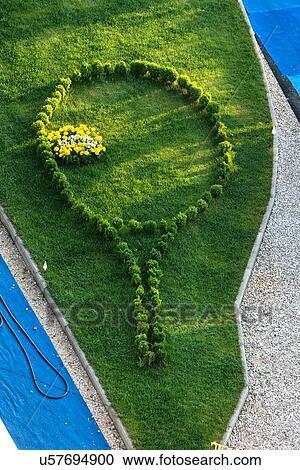 fiori gialli umbria