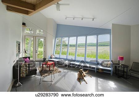 Coccolare cane rilassante in soggiorno con campo vista