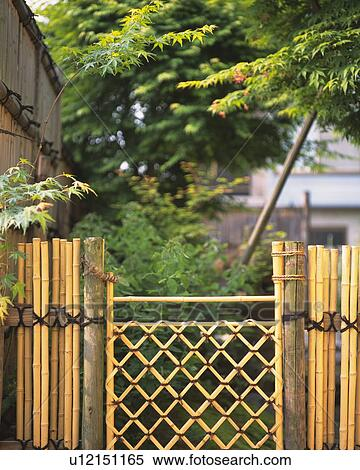 Arkivbilde Bambus Gjerde Inn Japansk Hage Japan Forrest Sikt