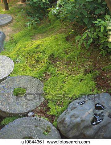 Banques De Photographies Pierres Dans Jardin Japonais Japon