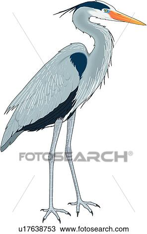 clipart of great blue heron u17638753 search clip art rh fotosearch com heron flying clipart heron bird clipart