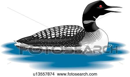clipart of loon u13557874 search clip art illustration murals rh fotosearch com loon flying clipart loon pictures clip art
