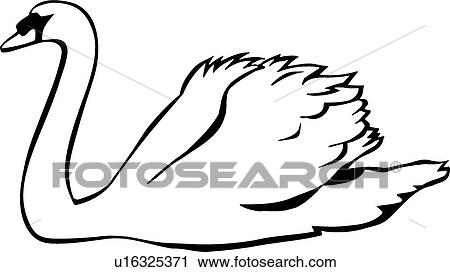 clipart of swan u16325371 search clip art illustration murals rh fotosearch com swan clipart pictures swan clipart png