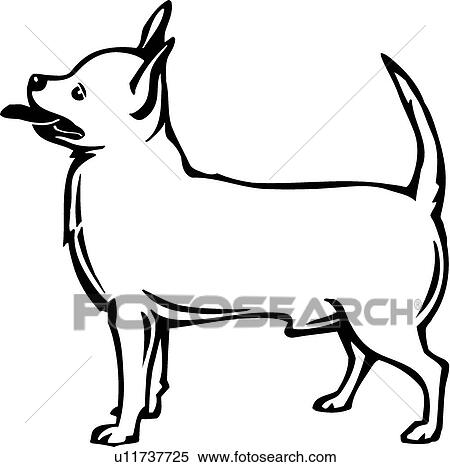 clipart of chihuahua u11737725 search clip art illustration rh fotosearch com chihuahua clipart black and white black chihuahua clipart