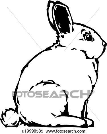 Clipart Of Bunny U19998535