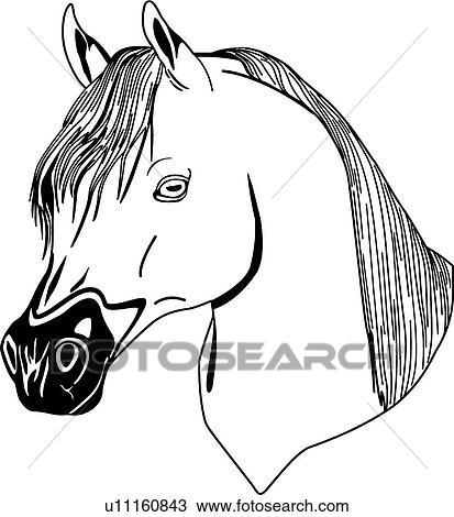 Cheval t te clipart u11160843 fotosearch - Clipart cheval ...