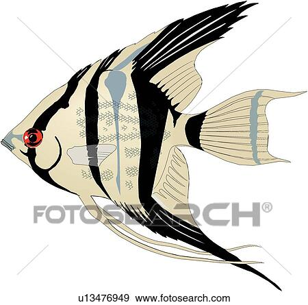 clip art of angelfish u13476949 search clipart illustration rh fotosearch com  blue angelfish clipart