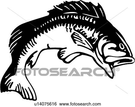 clip art of bass u14075616 search clipart illustration posters rh fotosearch com bass fish clipart clipart bass guitar