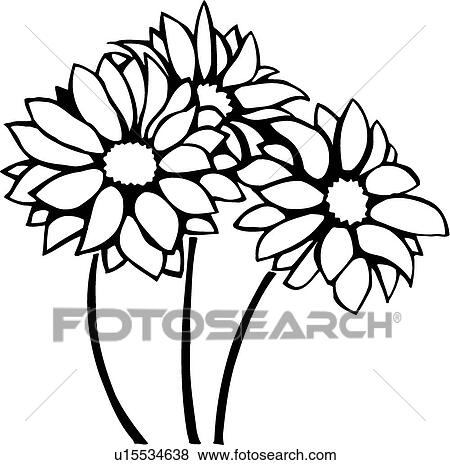 clip art of chrysanthemums u15534638 search clipart illustration rh fotosearch com chrysanthemum clip art free chrysanthemum book clip art
