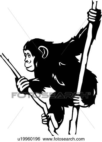 clip art of chimpanzee u19960196 search clipart illustration rh fotosearch com  chimpanzee face clipart
