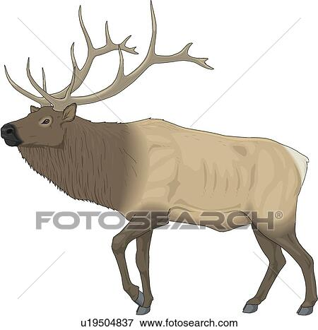 clip art of elk u19504837 search clipart illustration posters rh fotosearch com elk clipart images elk clip art in black and white