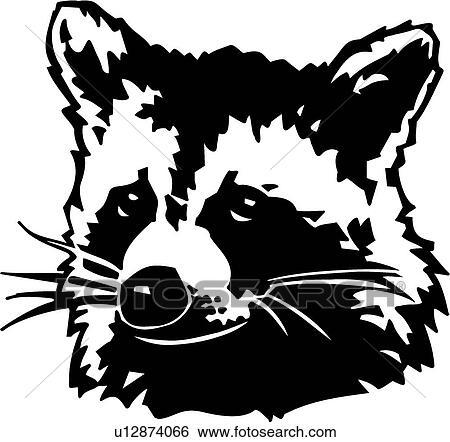 Raccoon Clip Art U12874066