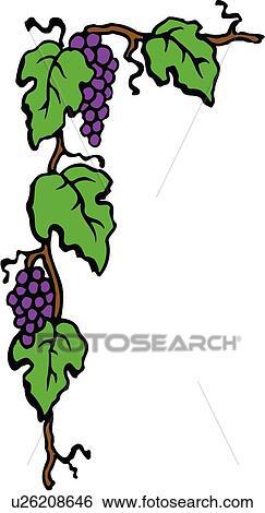 clipart desenho elemento borda canto uva uvas videira
