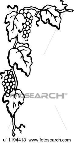 Clip Art Projektować Element Brzeg Róg Winogrono Winogrona