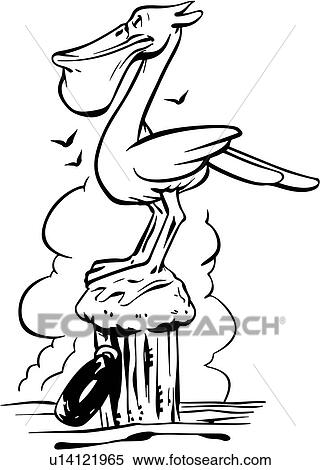 Animal Beak Bird Cartoons Ocean Pelican Water Clipart