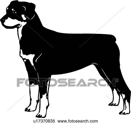 clipart of animal breeds canine dog rottweiler show dog rh fotosearch com rottweiler dog clipart rottweiler clipart png