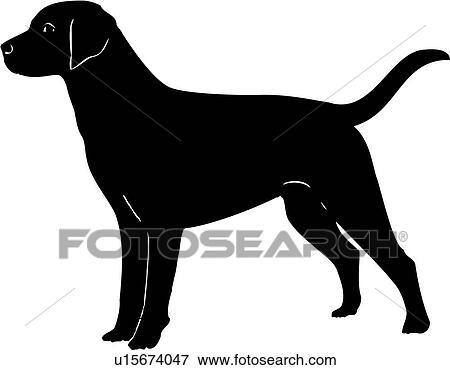 clip art of animal breeds canine dog labrador retriever show rh fotosearch com Microsoft Clip Art Labrador Retrievers Labrador Retriever Outline Drawings