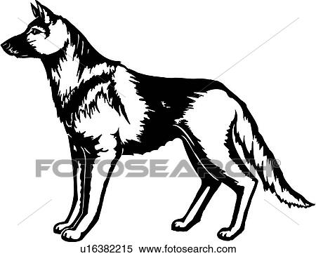 Animal canin chien berger allemand esp ces clipart - Dessin de chien berger allemand ...