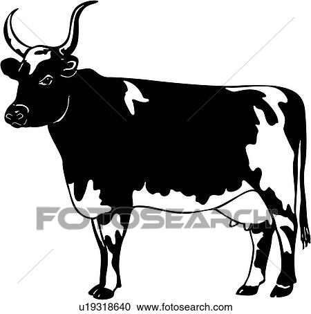 clipart of animal ayrshire breed bull cattle u19318640 rh fotosearch com livestock clip art free livestock show clipart