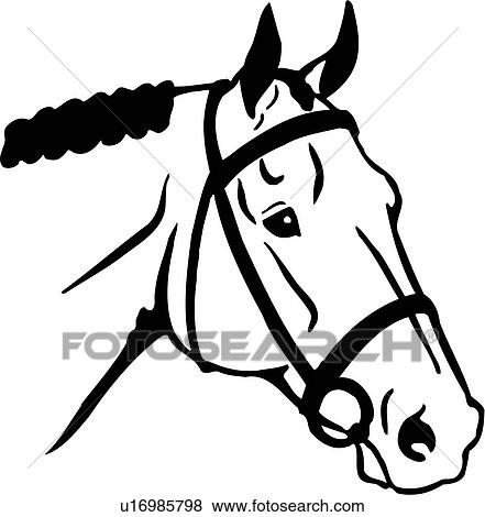clip art of animal english horse horse head breeds u16985798 rh fotosearch com quarter horse head clip art horse head outline clip art