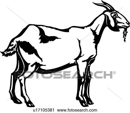 Clipart Of Animal Farm Goat U17105381