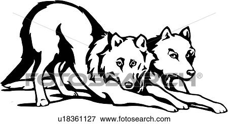 clip art of animal artic sled wolves u18361127 search rh fotosearch com running wolves clipart arctic wolves clipart