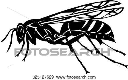 Clip Art Of Bugs Insect Wasp Yellow Jacket U25127629