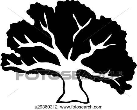 Clipart Of Oak Tree Varieties U29360312