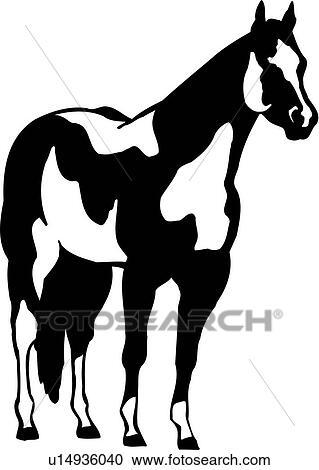 Clipart - tier, rasse, pferd, farbe, pferd, malen, pony, standing ...
