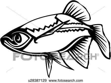 clip art of animal fish minnow ocean species u28387129 rh fotosearch com Minnow Menu Word Art Fire Clip Art