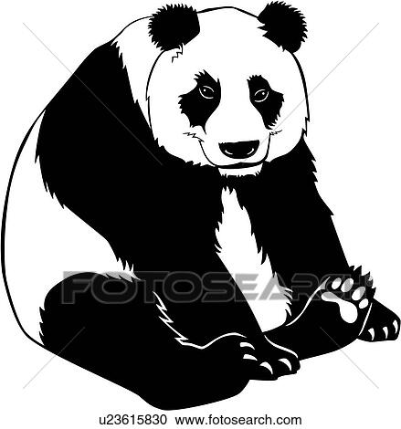 clipart of animal panda bear u23615830 search clip art rh fotosearch com clipart and frames and clipart png