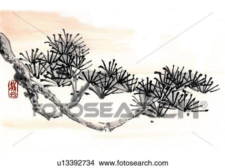 dessins branche de a arbre pin encre brosse. Black Bedroom Furniture Sets. Home Design Ideas
