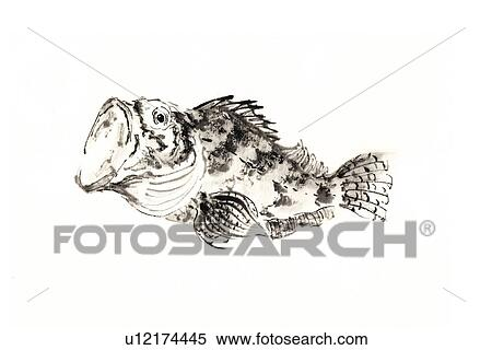 Scorpion Fish Drawing Scorpion Fish Ink Brush