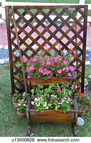 Flowers In Pot By Trellis In Garden