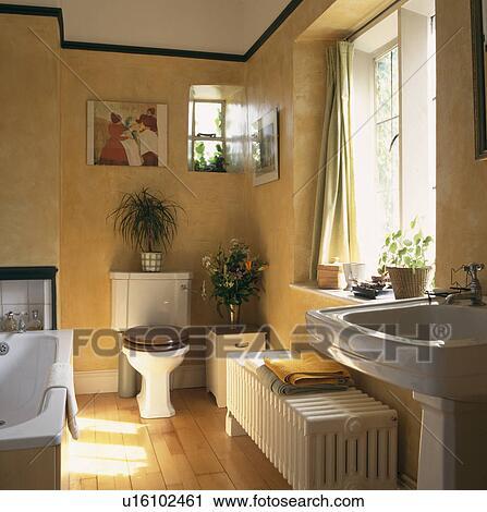 Blanc, toilette, et, carrée, bas, radiateur, dans, salle bains jaune, à,  plancher bois Banque d\'Image