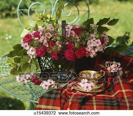 Bodegón De Rojo Dianthus Y Rosas Rosa En Arreglo Floral Con Antigüedad Taza Colección De Imágen