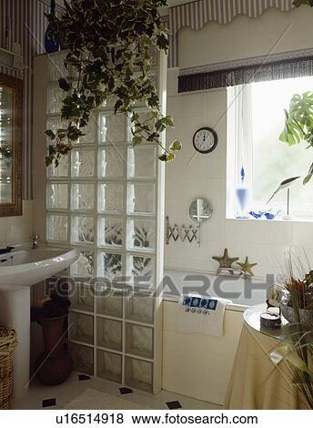 images houseplants au dessus brique verre panneau. Black Bedroom Furniture Sets. Home Design Ideas