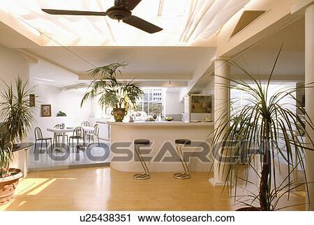 Moderno, cucina, con, pavimenti di legno prefiniti, e, sala da ...