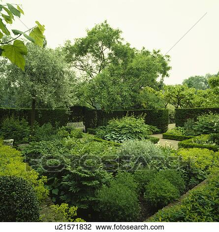 stock photo of shrubs and plants in green themed border in large